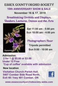 Essex County Orchid Society 10th Anniversary Show & Sale @ Visitation Church Parish Hall